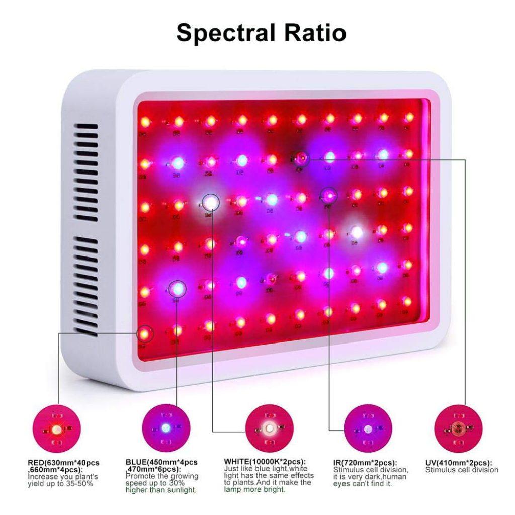 lampe horticole roleadro test